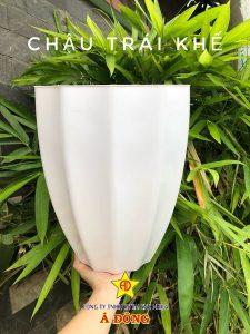 cong-ty-san-xuat-chau-nhua-4